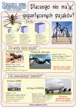 Plakat Gigantyczne pająki